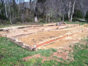 The completed garden beds.  If you look closely at the closest bed, you can see the cabbage seedlings.