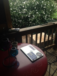 My new writing space on the back porch